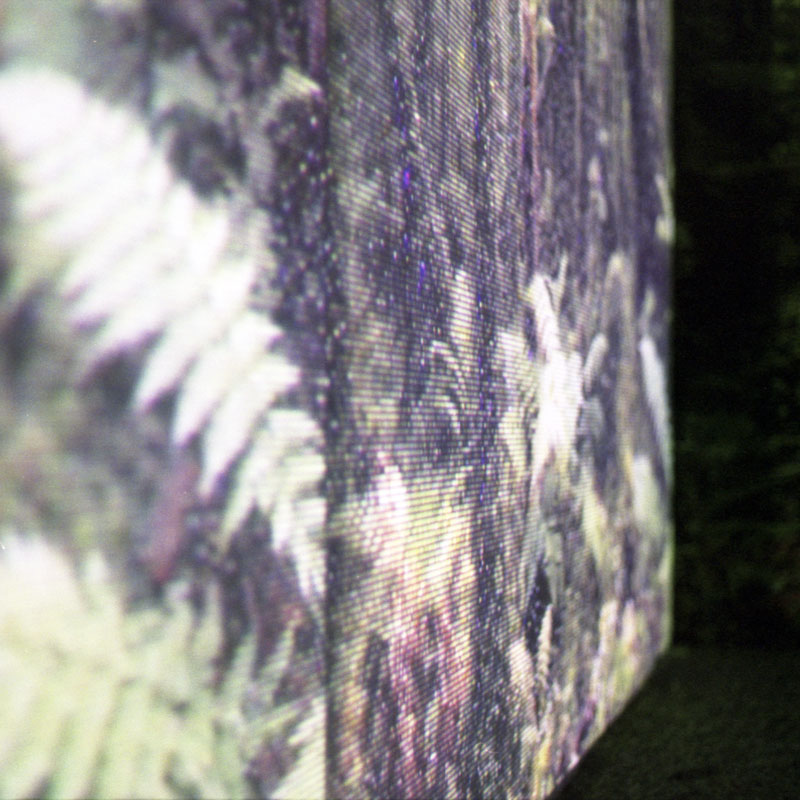 Photo of the pixelated projection of the picture of forest like wallpaper